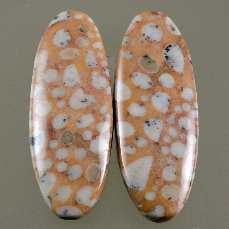 Fawn Stone Cabochons Cabochon Earring Cabs Designer image 0