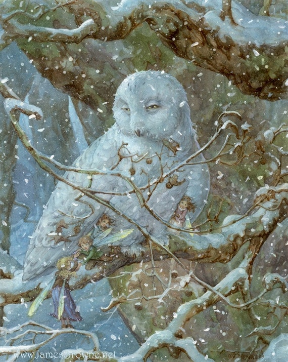 Winter Refuge Owl and Fairies 8.5x11 Signed Print