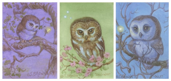 Little Owls 5x7 Signed Print Set of 3 Collection