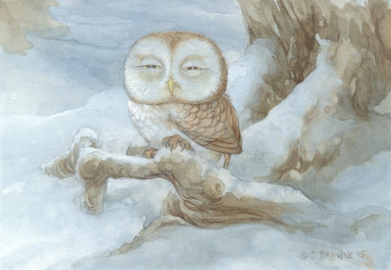 Sleepy Owl 8.5x11 Signed Print