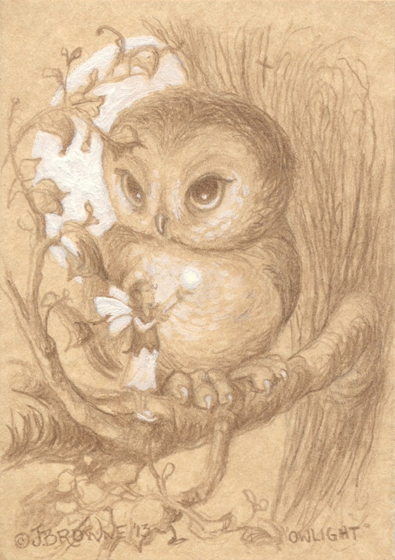 Owl Light 5x7 Signed Print