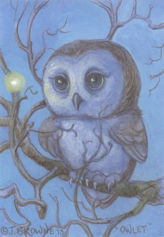 Little Light Owl 5x7 Signed Print