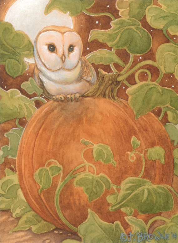 Harvest Moon Barn Owl 8.5x11 signed Print