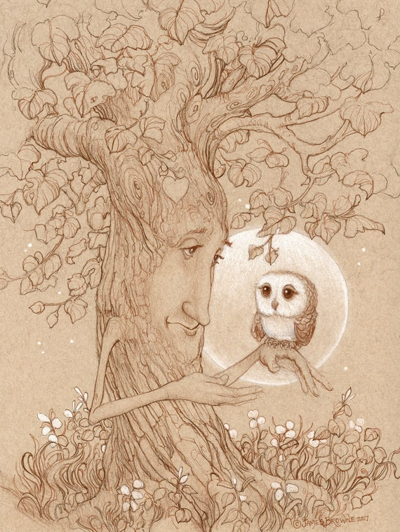 Story Time Tree and Owl 8x11 Signed Print