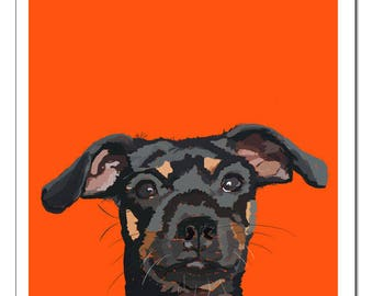 Minature Pinscher Dog Illustration-Pop Art Print
