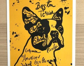 Boston Terrier Illustration Print