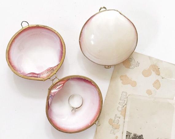 vintage natural seashell jewelry trinket box locket   shell keepsake box ring holder