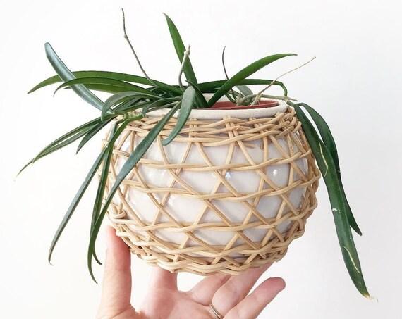 white modern boho woven wicker ceramic planter / propagation bud vase