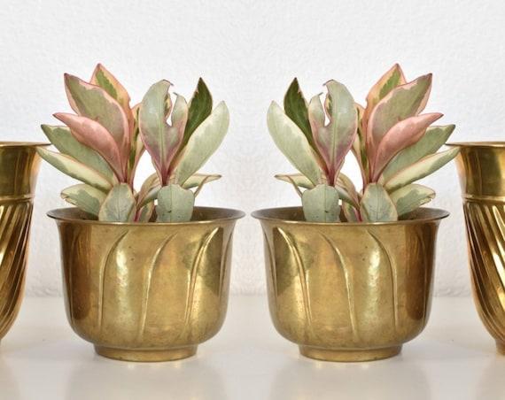 small rustic solid brass planter / flower pot vase / 1 pot