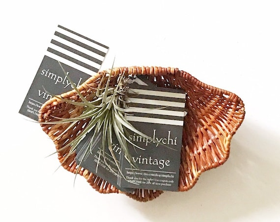 vintage woven wicker clam sea shell wall hanging basket / beach house decor / christmas gift