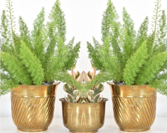 vintage hollywood regency brass planter with spiral design / flower pot