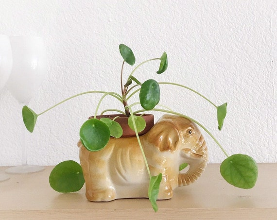 yellow elephant figurine sculpture planter | flower pot