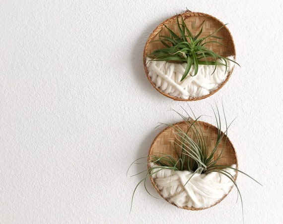 handmade wall hanging air plant holder fiber art basket | 1 basket