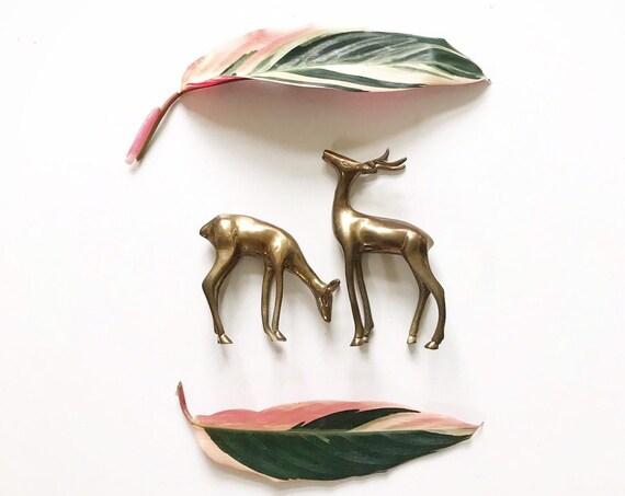 pair of sleek solid brass deer buck figurines / antlers / mother's day gift set