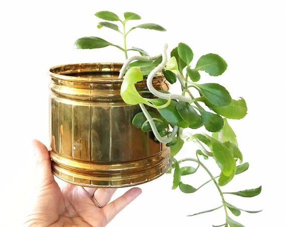 small decorative indoor brass cylinder planter | hollywood regency flower pot