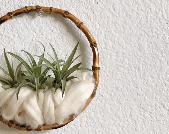 small handmade wall hanging air plant holder fiber art | circle wall decor