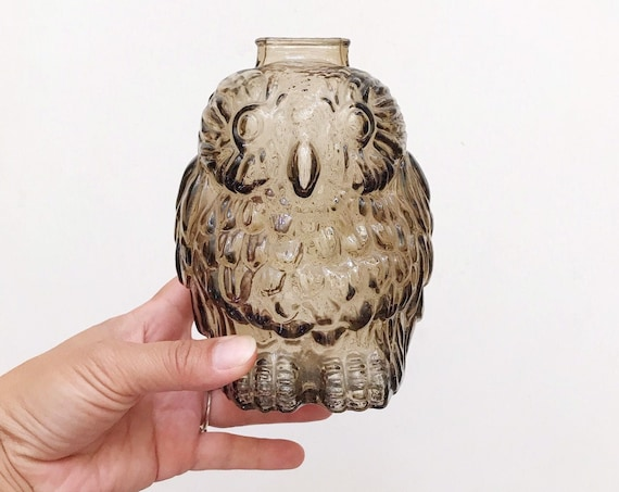 Smoky glass wise old owl bank figurine | coin piggy bank money saver