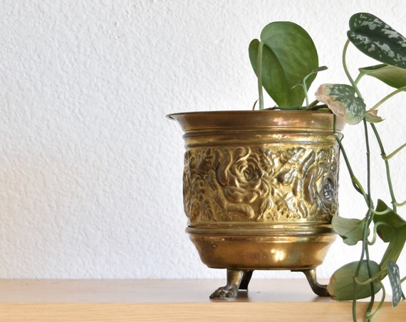 vintage small brass planter with decorative lion claw feet / pedestal flower pot / indoor gardening / regency