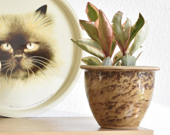 speckled brown glazed stoneware pottery planter | flower pot container