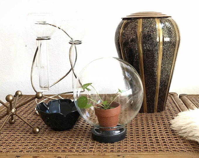 vintage glass ball snow globe cloche with suction base / gift terrarium lover / air plant