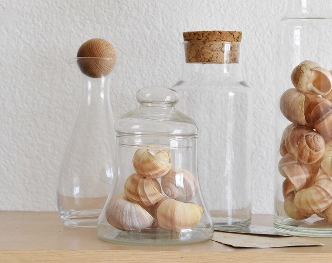 vintage glass bell apothecary jar / cloche display
