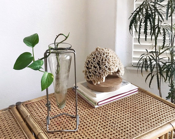 tall propagation glass jar vase with metal stand