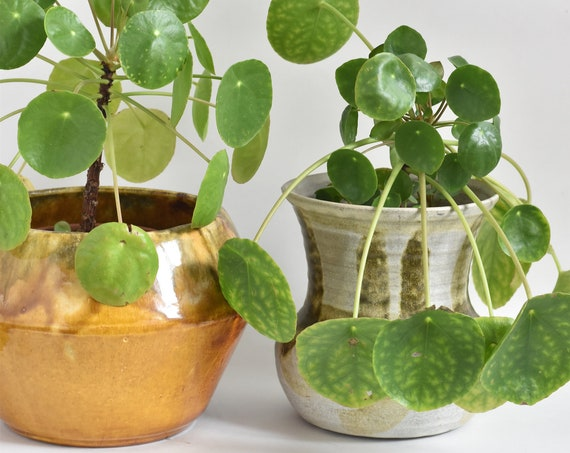 mid century grey green stoneware studio pottery flower pot / planter vase
