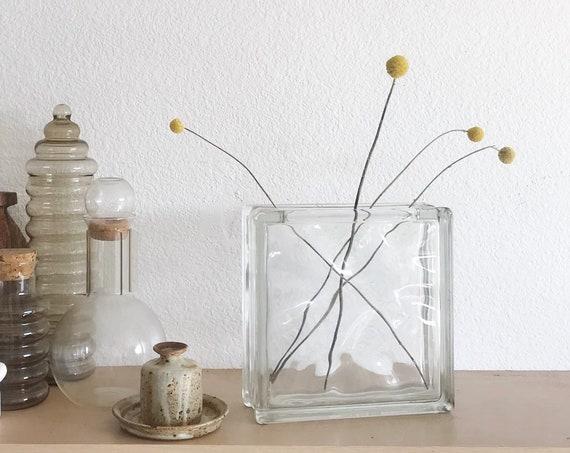 large heavy modern glass propagation vase   bud starter flower vase   gift for gardener