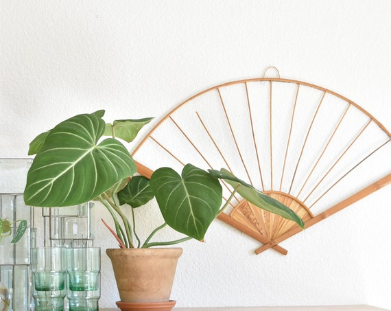 large bamboo wall hanging fan / decorative woven basket