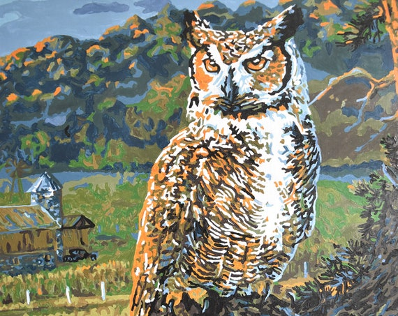 barn owl farm landscape painting / paint by number