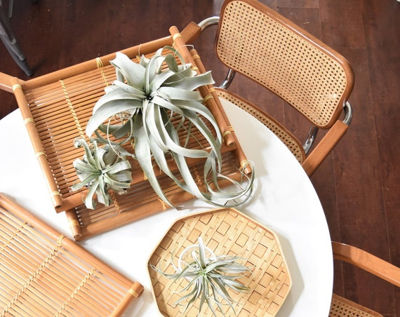 large rectangular mid century modern bamboo rattan basket serving tray | wood box