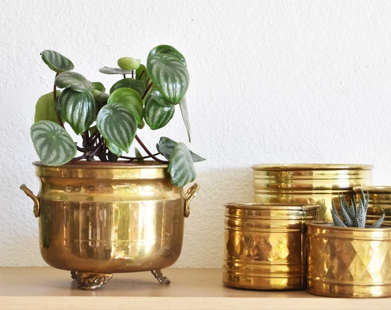 solid brass small hollywood regency indoor flower pot planter | footed with handles