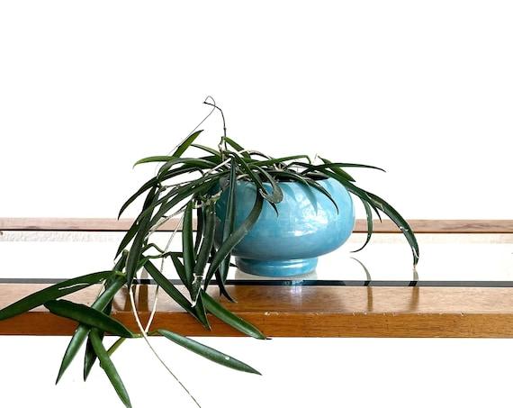 iridescent blue ceramic orb flower pot / planter vase