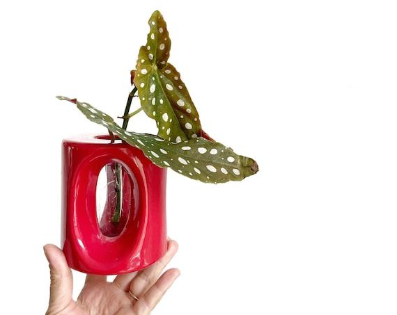 vintage ceramic red orb bud vase starter flower planter | propagation station