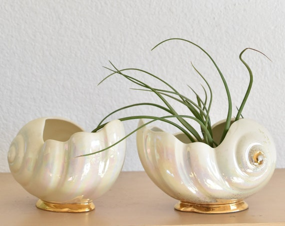 set of 2 porcelain seashell vase planter bookends | shell figurine sculptures