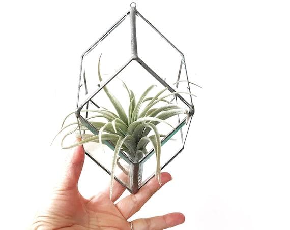 vintage beveled hanging geometric glass terrarium box / garden display