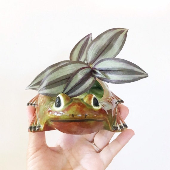 ceramic frog toad figurine soap dish | small flower pot planter
