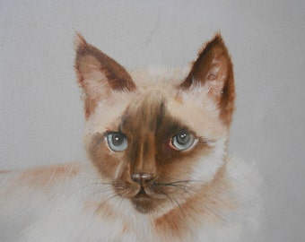 original vintage large siamese cat painting / cat lover portrait / white cat