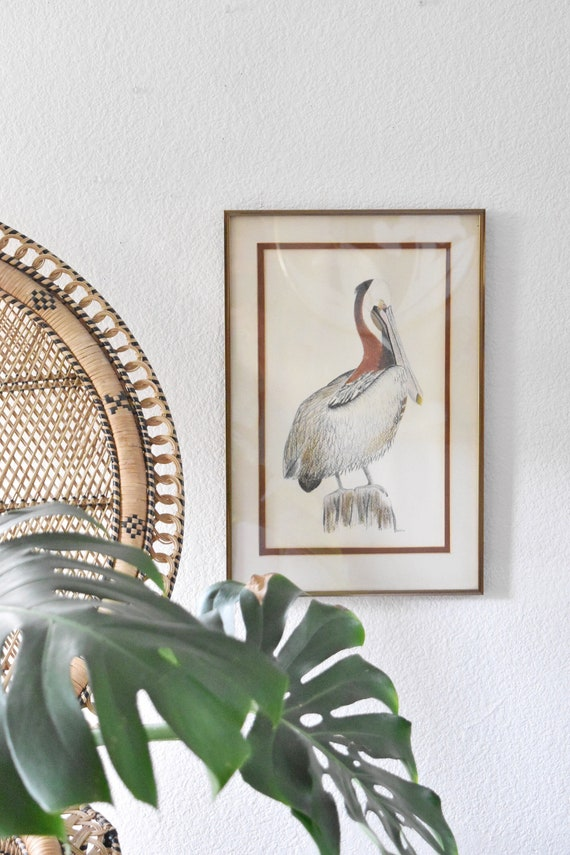 vintage framed original pelican bird drawing / color pencil pastel art