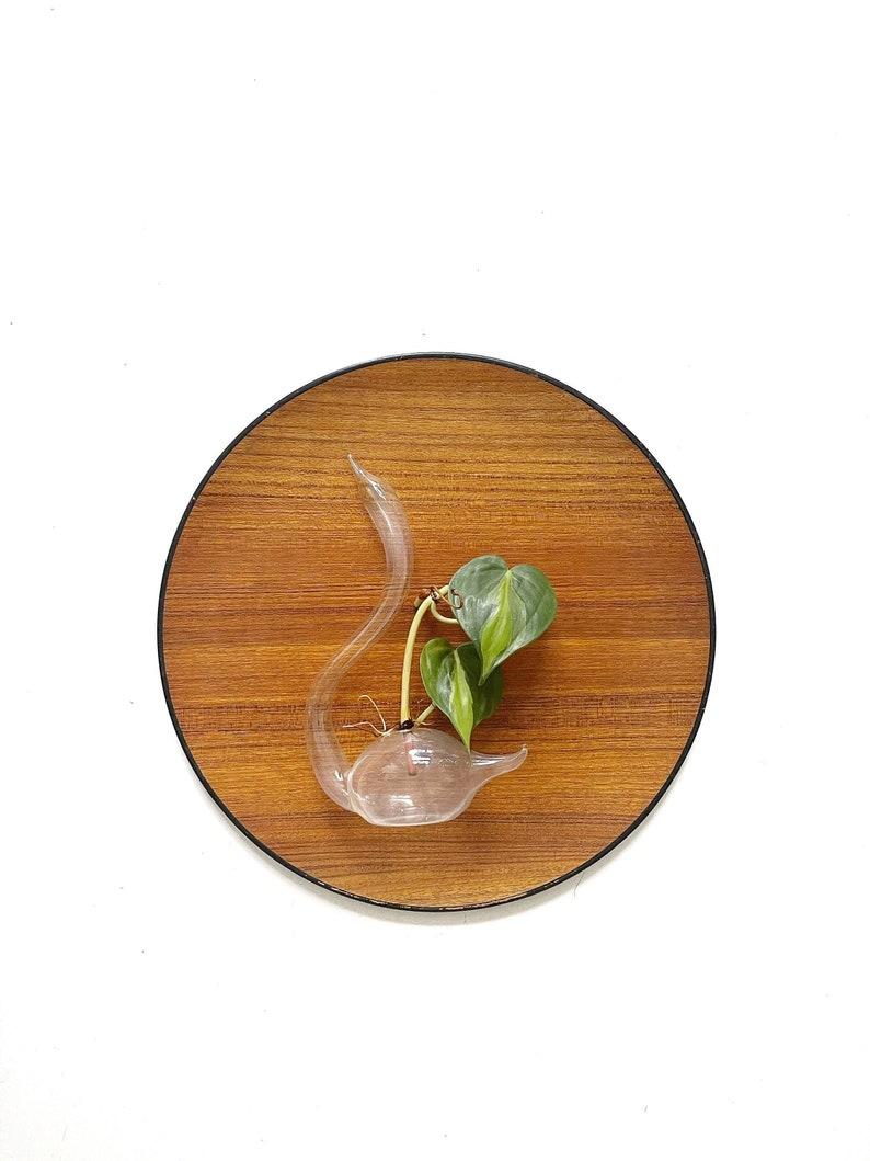 1970s minimalist glass swan bird propagation bud vase image 0