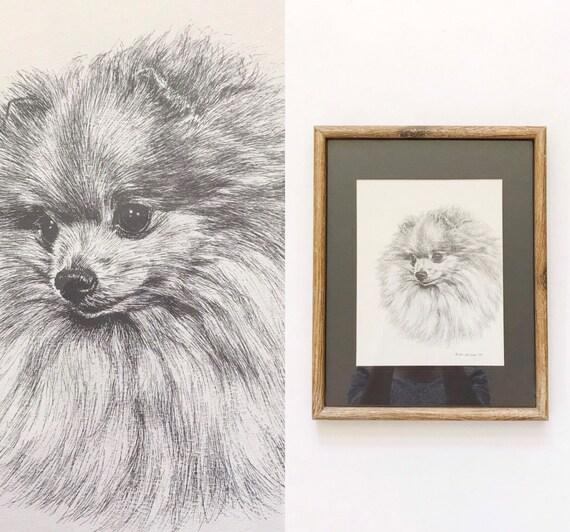 original vintage framed pomeranian dog drawing portrait lithograph / black white litho artwork