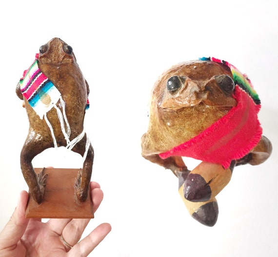 mexican frog figurine | taxidermy curiosity oddities