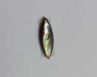 Tiny Abalone Smooth Flatback Cabochon
