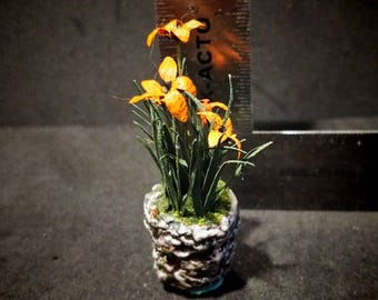Miniature Floral Spotted Tiger Lilies