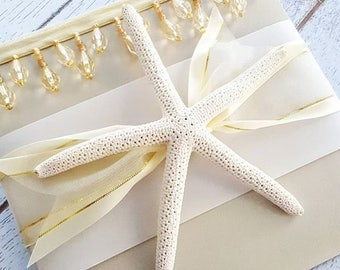 Cabo Beads Destination Luxe Starfish Champagne Pocketfold Invitation Suite