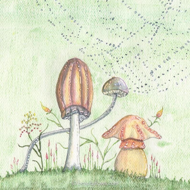 Mushroom art Art Photograph or Greeting Card image 0