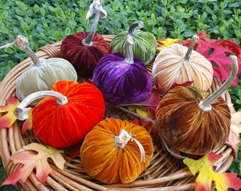 "8 X 4"" Silk Velvet Pumpkins with real Pumpkins Stems and 12 Silk Velvet Acorns with real Acorn Caps - #1725"