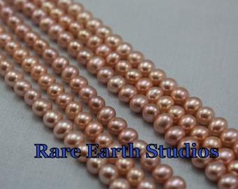 "Natural Fresh Water Pearls 5-6mm+/- 8""str 60215079"