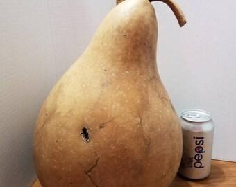 Large martin gourd.
