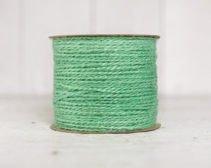 Jute Twine - 100 Yard Spool of Twine, 2-Ply Rustic Craft String, Mint Green